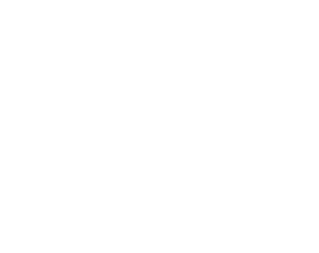 Art in Public Places